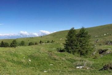 Salcus sul Pasubio e a Bevilacqua