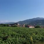 SALCUS a Spinimbecco e Montecchia