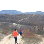 SALCUS sugli Euganei ed in riva all'Adige