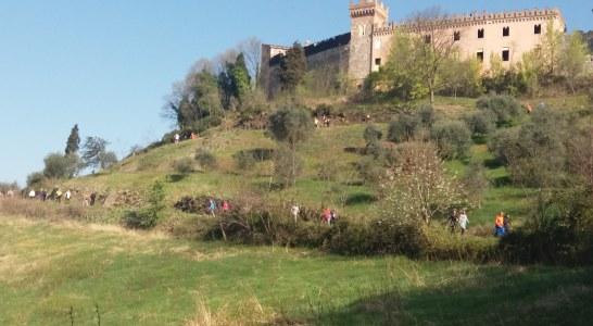 Salcus fra Ville e Castelli